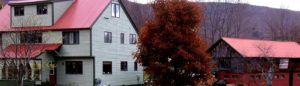 Fall season at St. Joseph's Dwelling Place